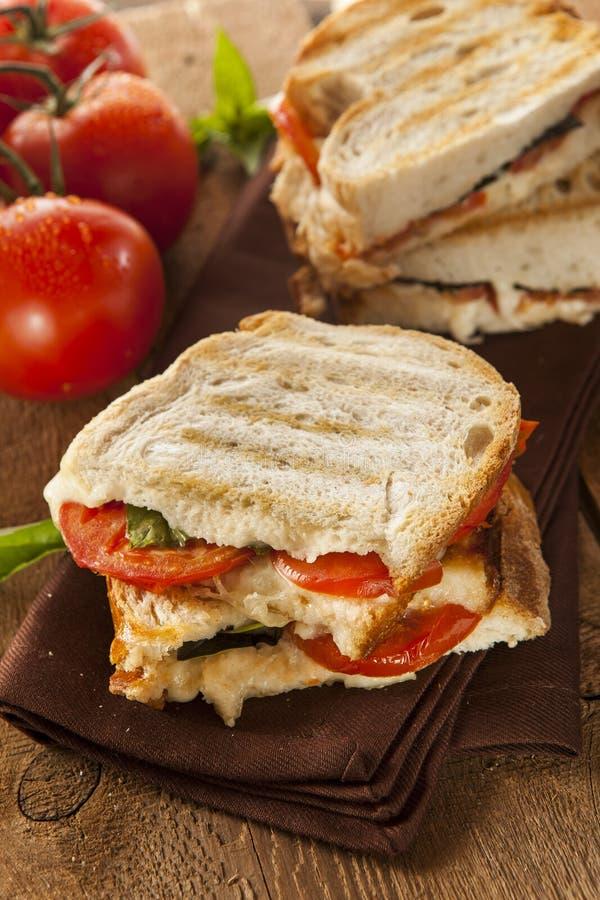 Domowej roboty pomidor Panini i mozzarella zdjęcia stock
