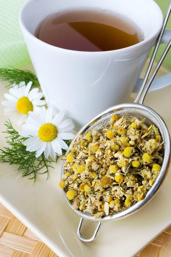 Domowej roboty remedium - ziołowy rumianek herbaty matricaria chamomilla - zdjęcia stock