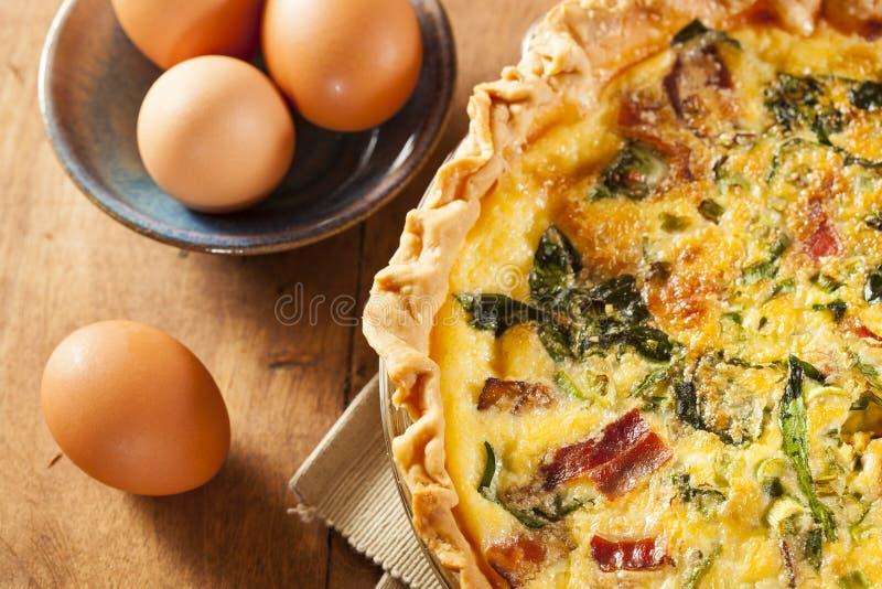 Domowej roboty szpinaka i bekonu jajka Quiche obraz stock