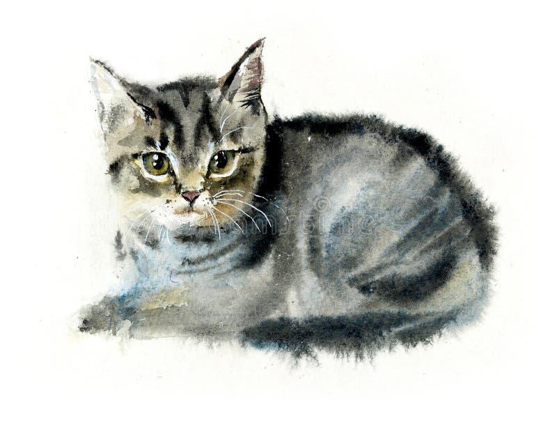 Domowy cat Kota tło Akwareli ręka rysująca ilustracja ilustracja wektor