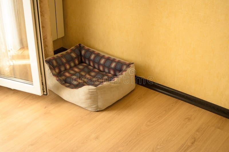 Domowy kąt dla kota z ściąga zdjęcie royalty free