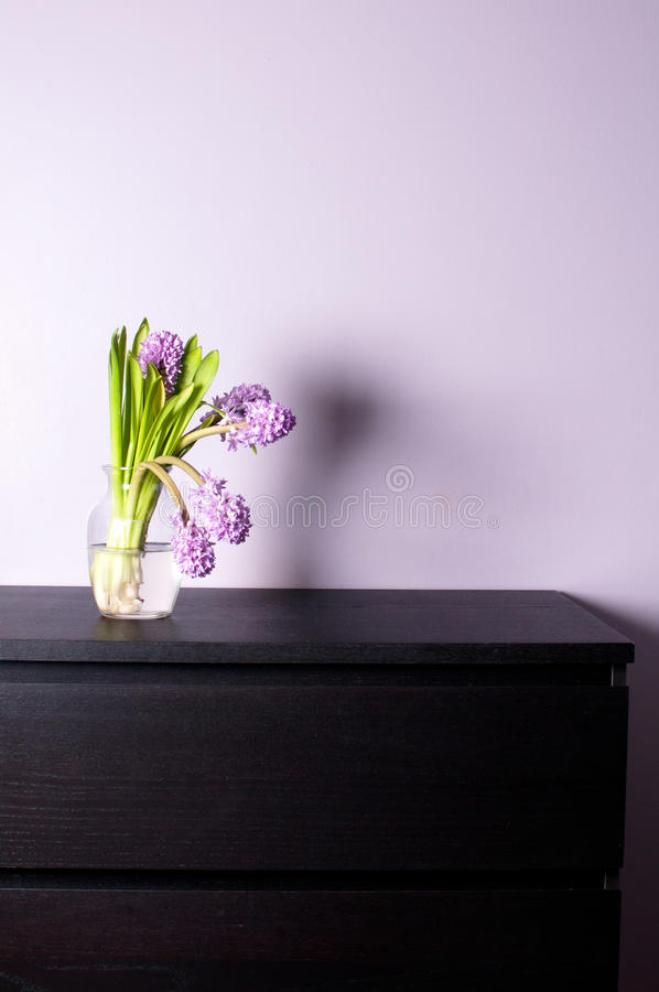 Domowy wystrój z purpurowym hiacyntem fotografia royalty free