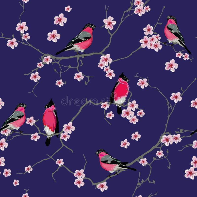 Dompfaffe auf dem purpurroten nahtlosen Muster Kirschblüte-Niederlassung lizenzfreie abbildung