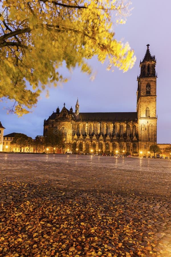 domplatz magdeburg стоковые изображения rf