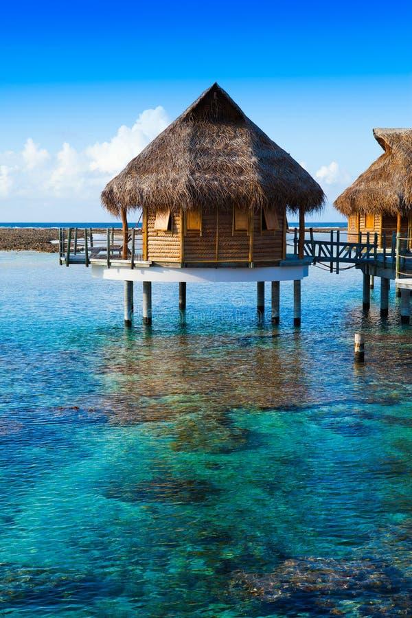 Domy nad przejrzystą spokojną wodą morską tahiti zdjęcie stock