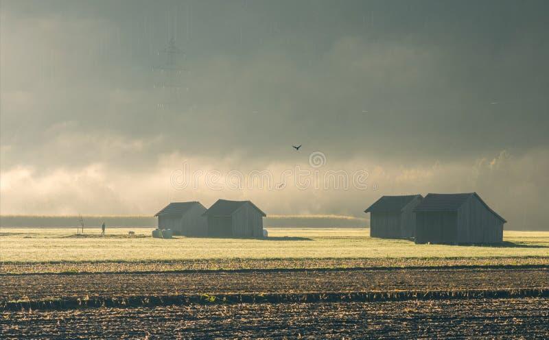 Domy w Szwajcaria w ranku zaparowywają przeciw tłu góry Krajobraz Szwajcarska wioska w ranek mgiełce obraz stock