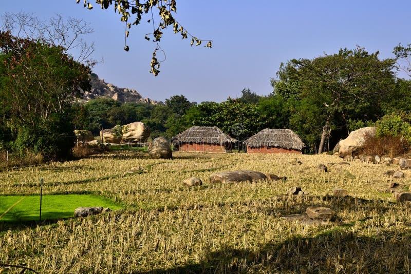 Domy z pokrywającym strzechą dachem w Indiańskiej wiosce zdjęcie royalty free