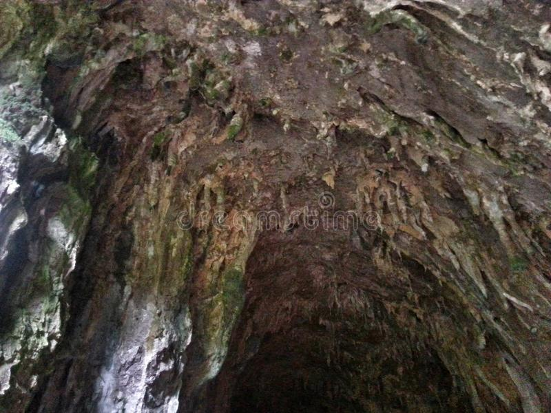 Don& x27; пещера t стоковые изображения