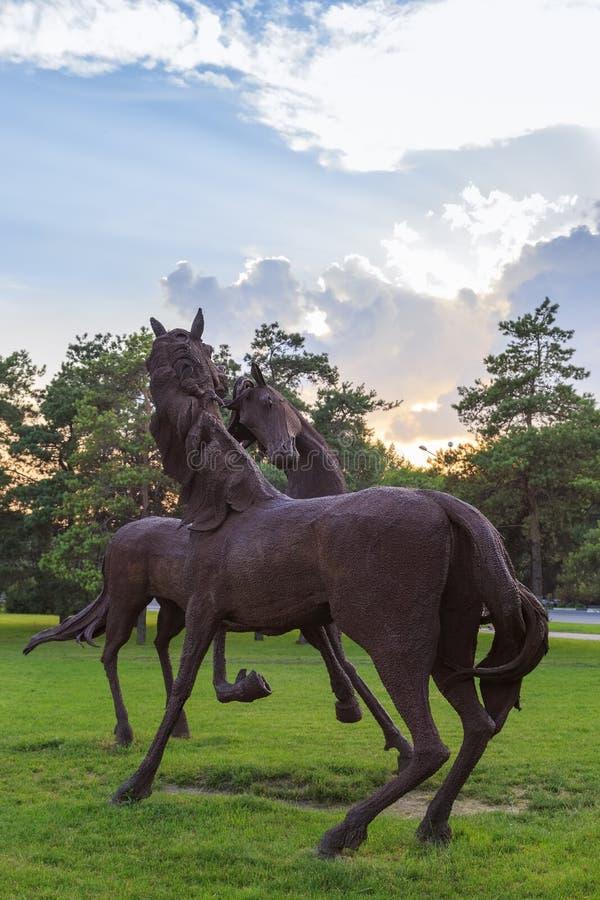 DON ROSJA, CZERWIEC, - 18, 2016: Rzeźba żelazni konie w parku miasto Rostov blisko lotniska zdjęcie royalty free