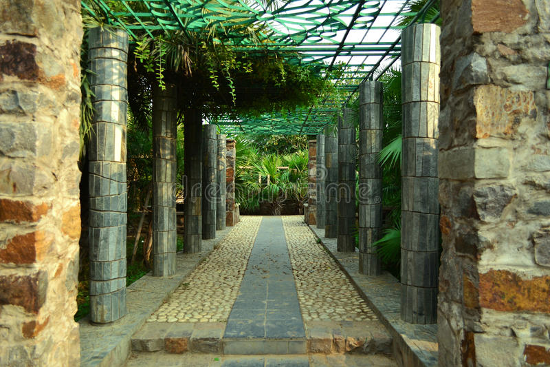 Don't be scared to travel the empty corridors because they often lead to most beautiful places. A pathway among the wood in the Garden of Five Senses-Delhi stock photo