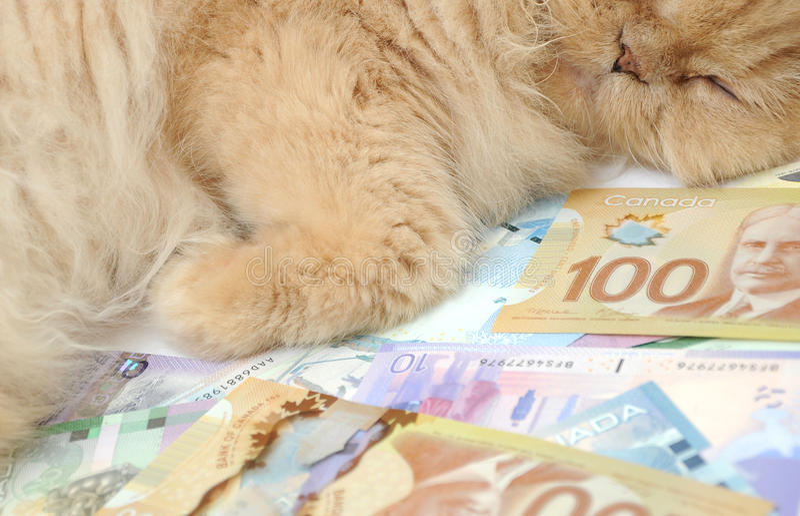 Don't let your money sleep stock photo