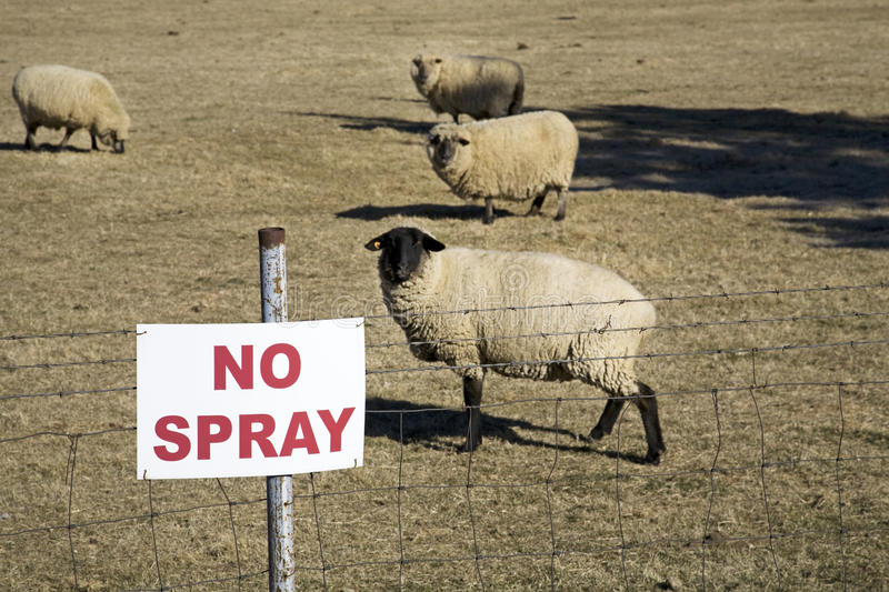 Download Don't Spray Sign With Sheep Stock Photo - Image: 18314830