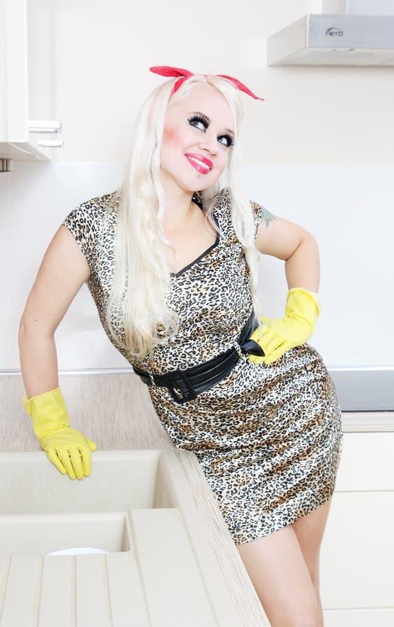 Download Dona De Casa Alegre Na Cozinha Imagem de Stock - Imagem de housework, gorgeous: 16855377