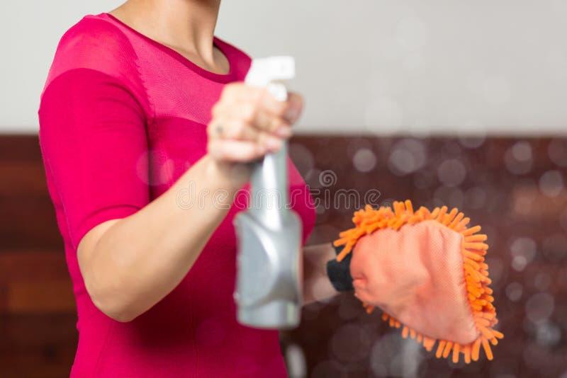 Dona de casa com líquido de limpeza de janela foto de stock royalty free