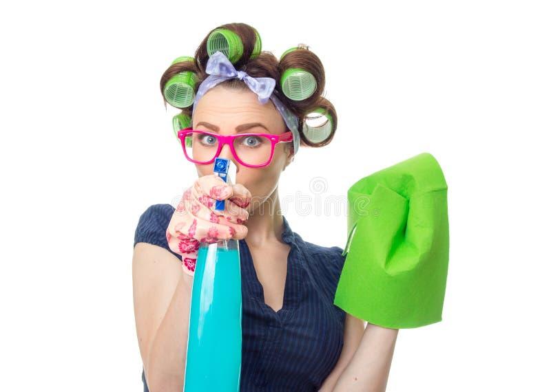 Dona de casa com pano imagens de stock