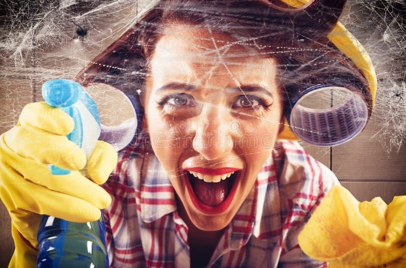 Dona de casa contra as teias de aranha imagem de stock royalty free