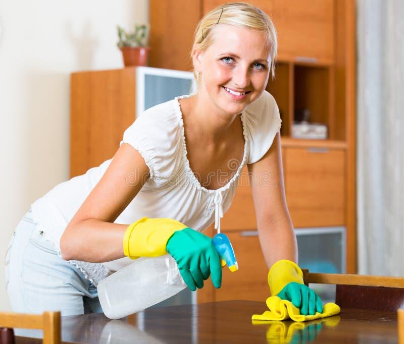 Dona de casa que faz a limpeza imagens de stock royalty free