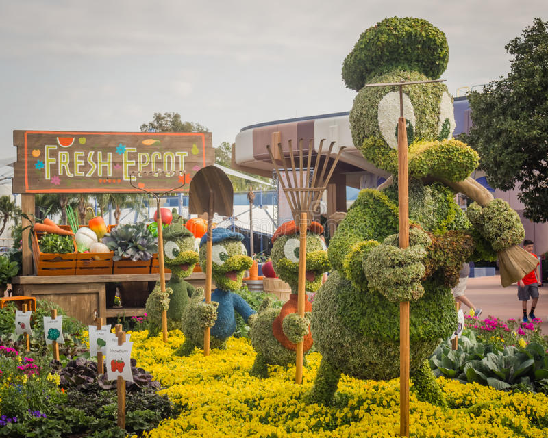 Donald Duck Topiary Epcot Flower Garden Festival. Donald Duck with Huey, Dewey, and Lewie topiaries part of the 2017 Disney`s Epcot Flower and Garden Festival royalty free stock photos