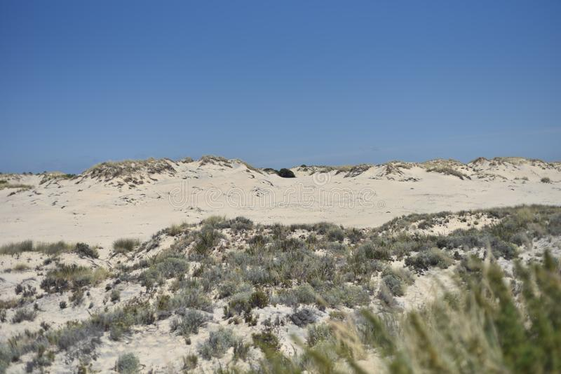 Donana National Park in Andalusia, Spain stock images