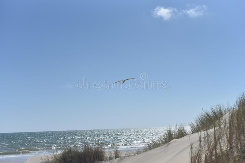 Donana National Park in Andalusia, Spain stock photo