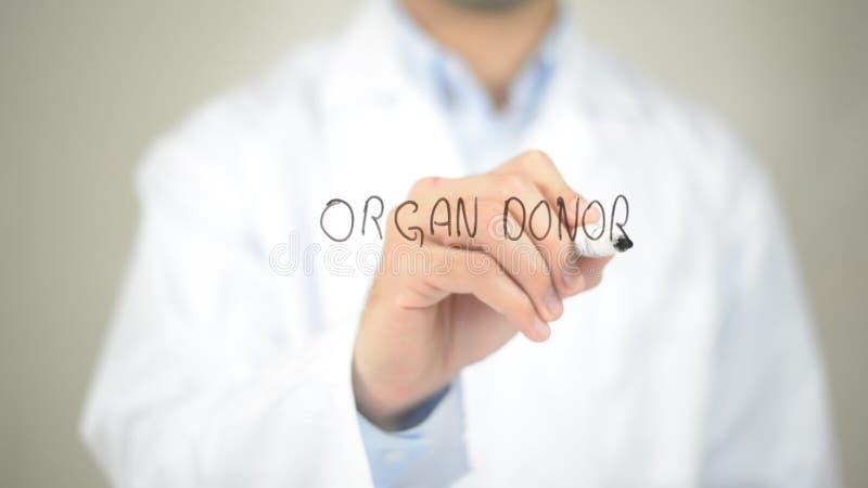 Donante de órganos, escritura del doctor en la pantalla transparente fotos de archivo