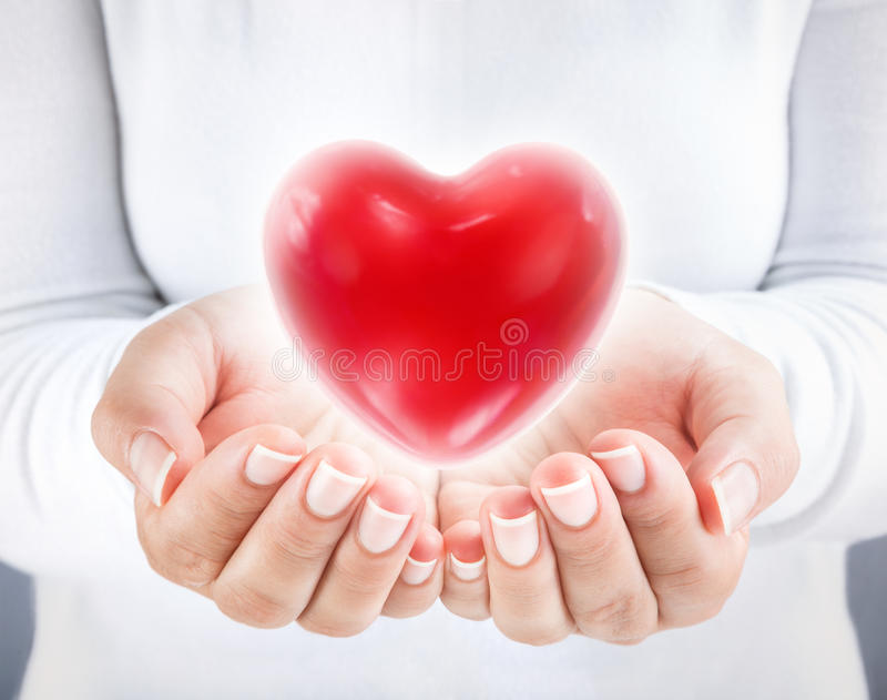 Donate heart. Woman holding heart stock image