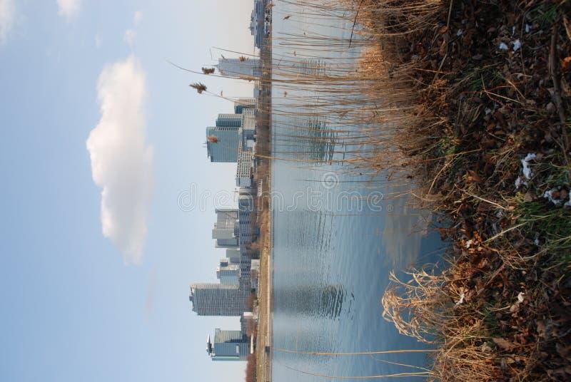 donau города стоковые фото