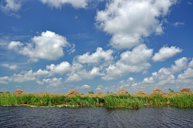 Donau-Delta, Rumänien stockfotografie