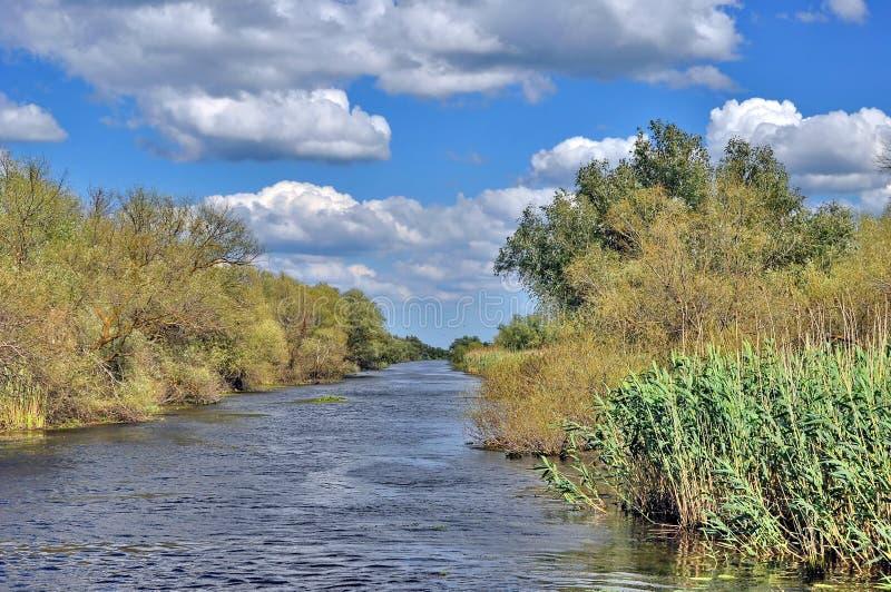 Donaudelta royaltyfri foto
