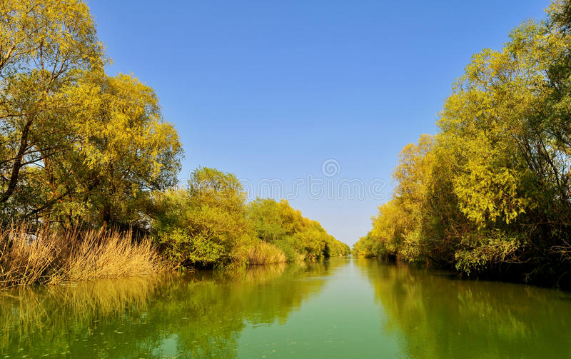 Donaudeltalandskap arkivbilder
