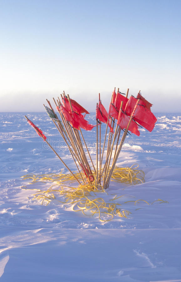 Done with the Flag Line. Remains of a safety flag line used during the 6 month long night at the South Pole, Antarctica stock images