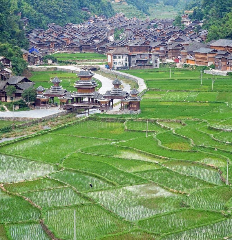 Dong kinesisk by på riceterrassen royaltyfri fotografi