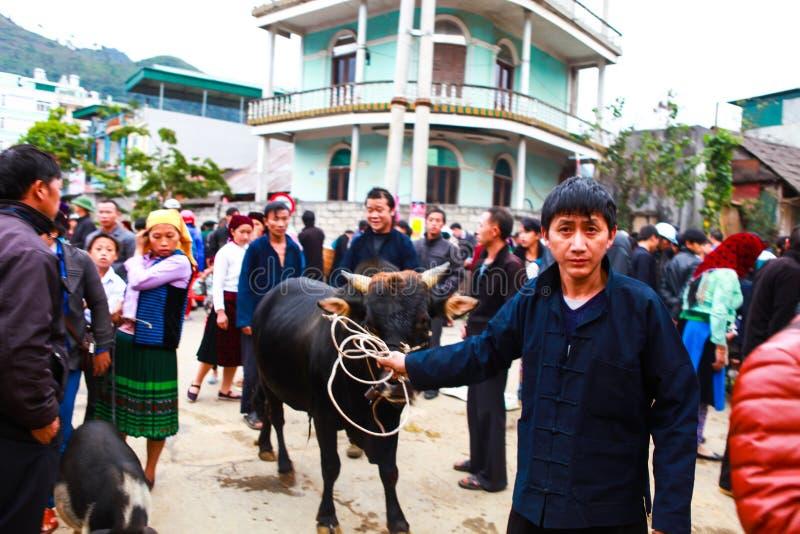 DONG VAN, Ha GIANG, VIETNAM, 18 November, 2017: Hmongmensen, bergachtig Dong Van die, Ha Giang, vee, openluchtmarkt handel drijve royalty-vrije stock fotografie