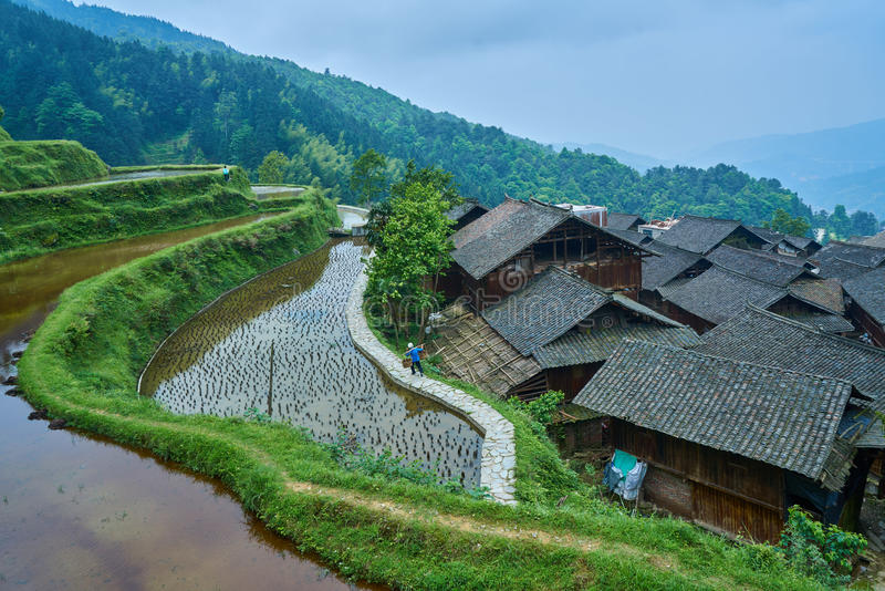 Village, Guizhou, China. Chinese Village Zhaoxing with the rice terrace from top of the hill, Province of Guizhou, China stock photos
