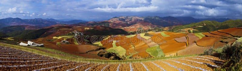 Dongchuan, Yunnan czerwieni ziemia obraz stock