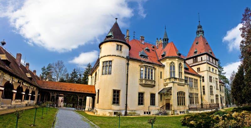 Donji Miholjac slottpanorama, Kroatien arkivfoto