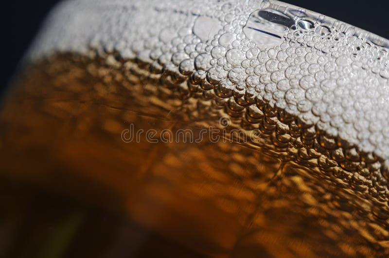 Donker Bier royalty-vrije stock foto's