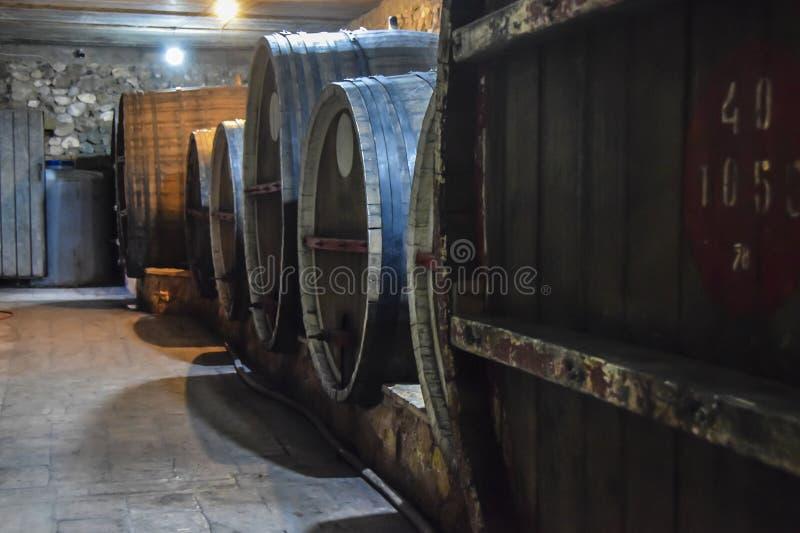Donker en de vochtige vaten van het glasflessen van de wijnkelder royalty-vrije stock afbeelding