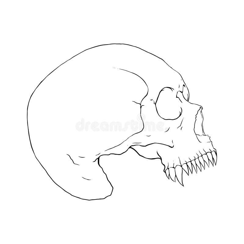 Donker Fang Skull, Illustratievector stock illustratie