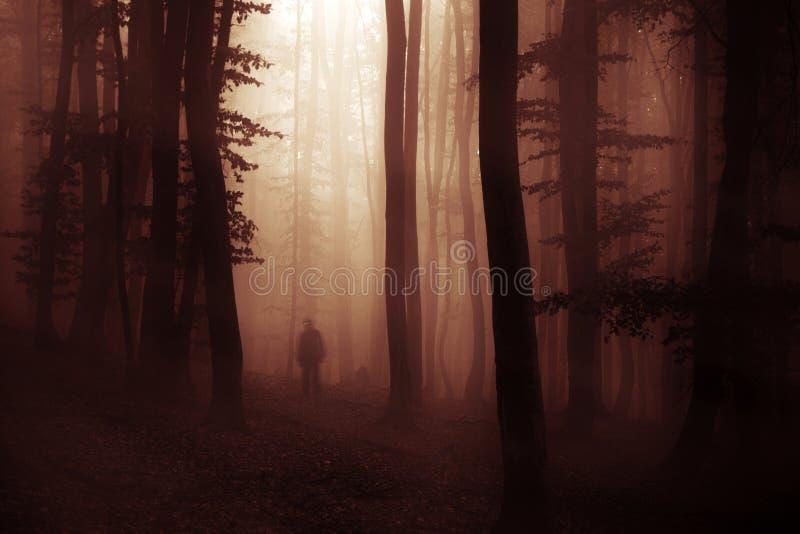 Donker Halloween-verschijningsspook in bos met mist stock afbeelding