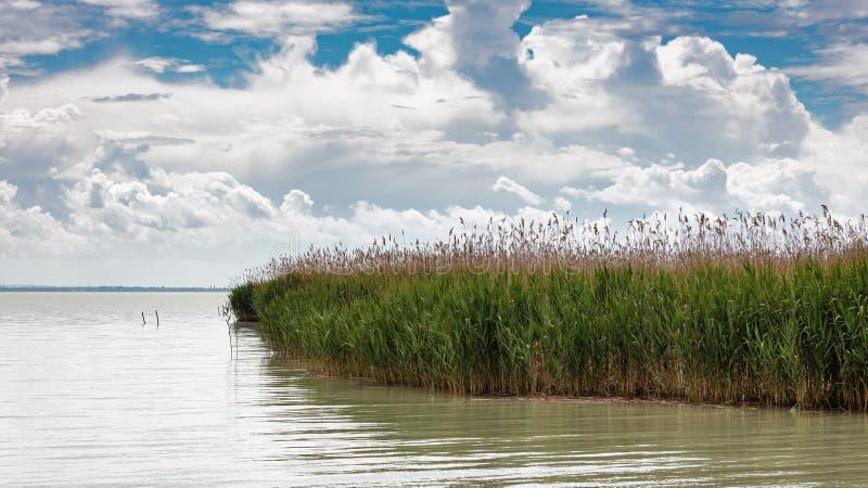 Donker landschap over meer Balaton van Hongarije royalty-vrije stock fotografie