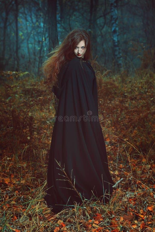 Donker portret van de bosbewaarder stock foto