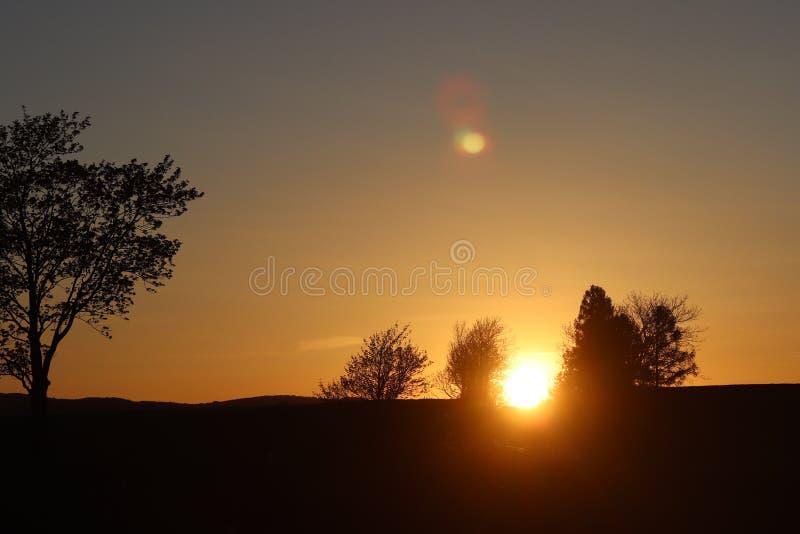 Donker silhouet van bomen en neven tegen de achtergrond van een oranje zonsondergang De vouwen van de avondaard aan een romantisc stock afbeeldingen