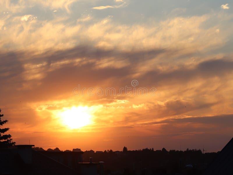 Donker silhouet van bomen en neven tegen de achtergrond van een oranje zonsondergang De vouwen van de avondaard aan een romantisc royalty-vrije stock afbeeldingen