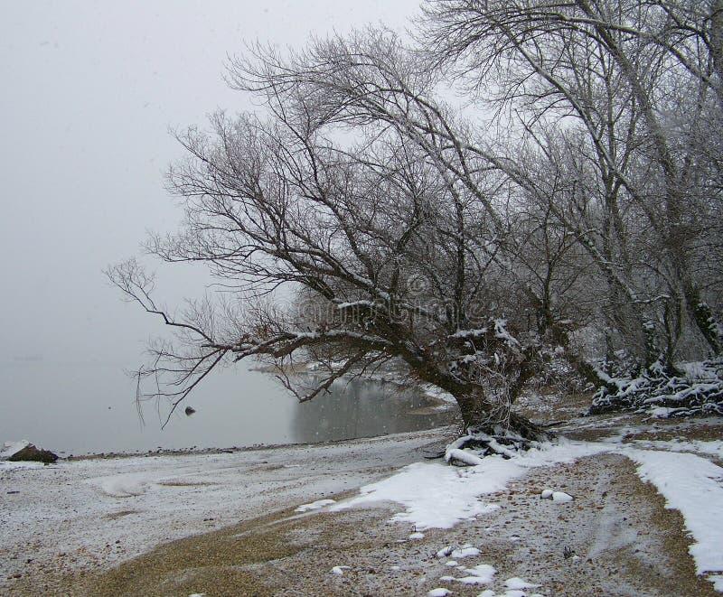 Donker weer, sneeuwrivieroever stock afbeelding