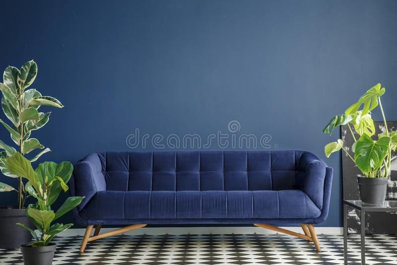 Donkerblauw woonkamerbinnenland stock afbeelding