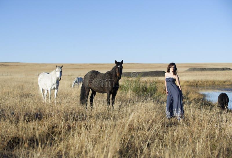 Donkerbruine vrouw op gebied die zich naast paarden bevinden stock afbeeldingen
