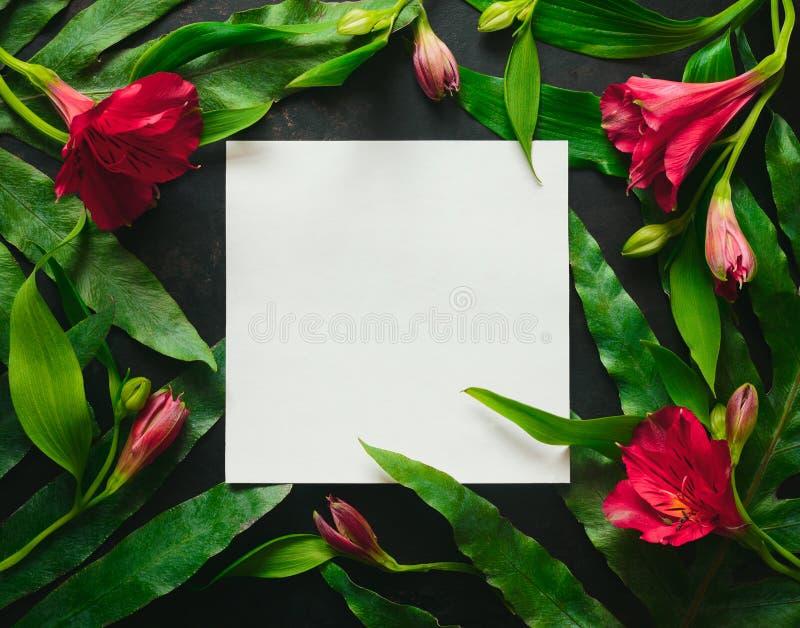 Donkere bloemenachtergrond met een ruimte voor een tekst royalty-vrije stock foto
