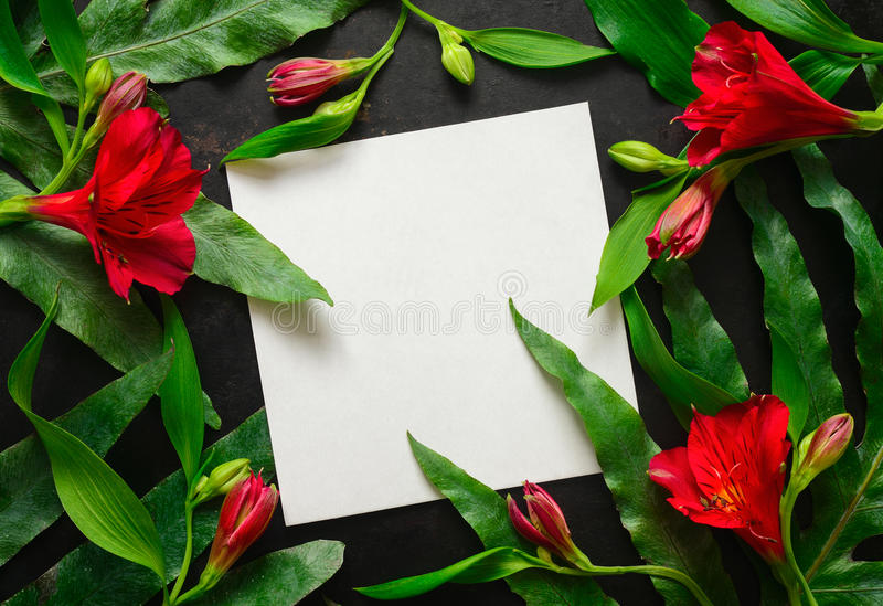 Donkere bloemenachtergrond met een ruimte voor een tekst royalty-vrije stock afbeelding
