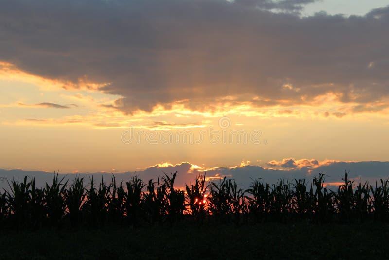 Donkere de zomerdaling boven het dorp stock fotografie